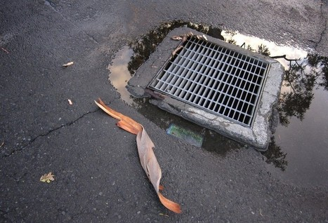 After Trying To Retrieve Phone, Teen Gets Stuck In Drain - Business 2 Community   Digital-News on Scoop.it today   Scoop.it
