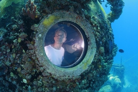 Bonaire Beach Club Partners with Ocean Conservationist Cousteau | Caribbean Island Travel | Scoop.it