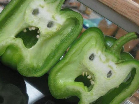 Online Picture Gallery Of Faces Hidden In Everyday Objects | Funny Stuff | Scoop.it