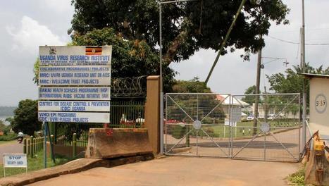 À l'Institut ougandais de recherche sur les virus, à Entebbe, où fut identifié pour la première fois le Zika | EntomoScience | Scoop.it