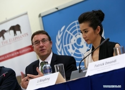 Chinese actress Li Bingbing joins campaign against wildlife poaching | Wildlife Trafficking: Who Does it? Allows it? | Scoop.it