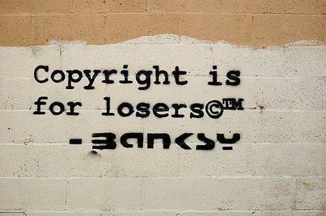 Droit d'auteur sur les données personnelles : les plateformes le contourneraient facilement | Libertés Numériques | Scoop.it