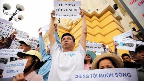 Millions of dead fish on Vietnam's shores raise industrial pollution fears | GarryRogers Biosphere News | Scoop.it