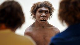 El vicio de fumar, ¿es culpa del hombre de Neandertal? - BBC Mundo - Noticias   Efectos del Tabaquismo   Scoop.it