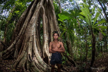 Saving Bangladesh's last rainforest | Oceans and Wildlife | Scoop.it