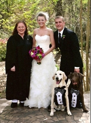 Wedding Vendors for Wedding Officiants and Premarital Counseling in Los Angeles, CA - iWedPlanner | Wedding Planner | Scoop.it