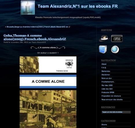 Team Alexandriz, ou les pirates qui rémunèrent l'ayant droit | WatchSecurity | Scoop.it