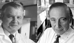 Who discovered HIV: Gallo, Montagnier or both? | Medical Innovations | Scoop.it