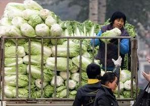 Scandales en Asie : chou au formol et capsules de bébés en poudre ! | agro-media.fr | Actualité de l'Industrie Agroalimentaire | agro-media.fr | Scoop.it