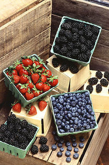 Strawberries And Blueberries Halt Cognitive Decline In Elderly | The Glory of the Garden | Scoop.it