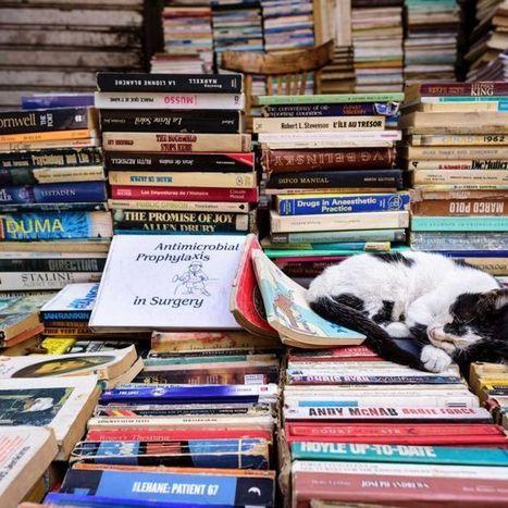 Bibliotherapy -using  literature as therapy | ABC (Australie) | Kiosque du monde : A la une | Scoop.it