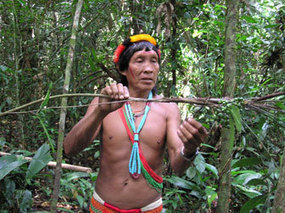 How rainforest shamans treat disease | health & medicine in philosophy & culture | Scoop.it