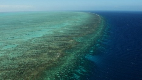 Oil slick fears allayed in Barrier Reef waters | All about water, the oceans, environmental issues | Scoop.it