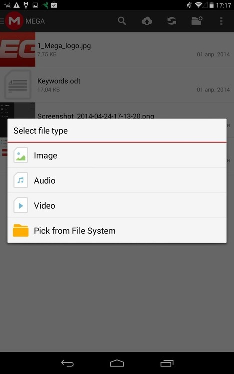 Mega For Your Photos | Cloud Storage Service Backs Up Your Photos from Your Mobile | Scoop.it