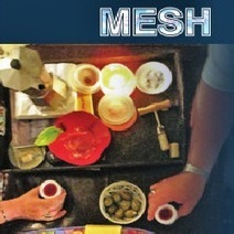 MESH by Coffman and Pelle Book Review | Favorite Book Reviews, Books and Authors | Scoop.it