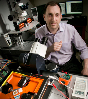 Microchip-Like Technology Allows Single-Cell Analysis | Amazing Science | Scoop.it