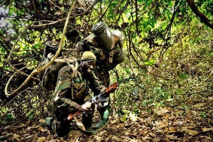 LRA poaching ivory as Kony hunt intensifies | Rhino poaching | Scoop.it