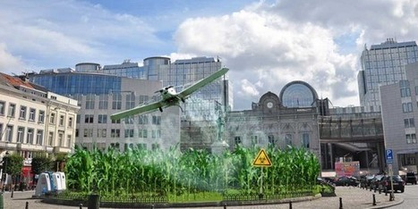GM Maize 1507 Safety Scandal Erupts ahead of EU Vote | @FoodMeditations Time | Scoop.it