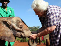 A place of hope amid the elephant poaching crisis - CBS News | Rhino poaching | Scoop.it