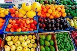 World Food Program open studies, based in Paraguay | Calidad y otras yerbas | Scoop.it