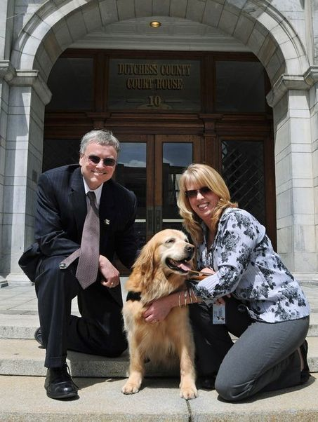 N.Y. lawmakers seek to allow comfort dogs at court | Pet News | Scoop.it