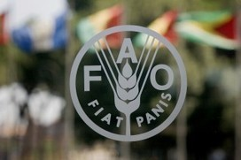 Scientists praise and challenge FAO on agroecology | Questions de développement ... | Scoop.it