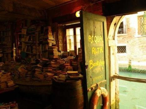 12 bookstores every reader should visit in their lifetime   StewiackeNews   Scoop.it