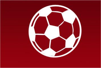 Bundesliga: Ssssssh! German fans stage silent protest | Sports ... | Sports Facility Management.4369588 | Scoop.it