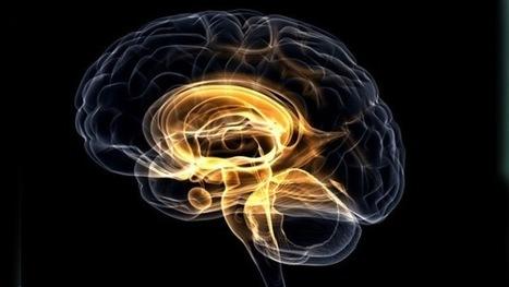 ¿Existirá la vida perfecta?: Los científicos podrían reescribir los recuerdos del cerebro   Psico-dinamicas   Scoop.it