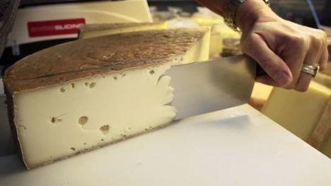 Le Vacherin fribourgeois AOP : L'histoire d'un produit à travers les siècles | thevoiceofcheese | Scoop.it