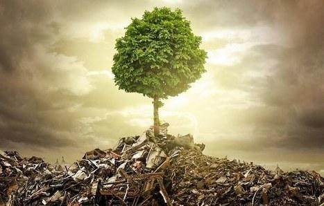 L'économie circulaire, un espoir pour la planète | autoformation | Scoop.it