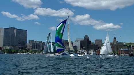 Boats set sail in race from NS to French islands - CBC.ca | I love boating | Scoop.it