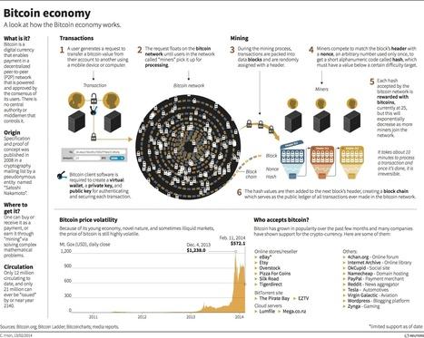 bitcoin.jpg (1772×1414) | Economics | Scoop.it