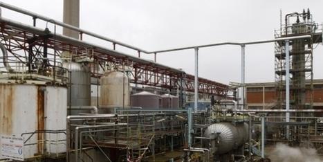 Petroplus: Murzuq Oil vise un retour à la rentabilité d'ici 3 ans | Murzuq Oil Petroplus | Scoop.it