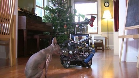 Microsoft robotics developer builds remote dog-sitting bot | The Robot Times | Scoop.it