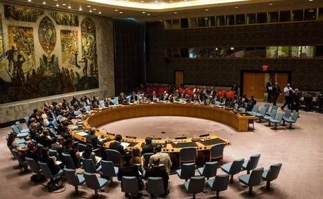 UN Security Council Disagreement Doesn't Mean Lack of Support to India: US - NDTV | NGOs in Human Rights, Peace and Development | Scoop.it
