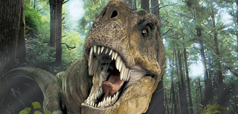 Dinosaur Games | surgery games online | Scoop.it