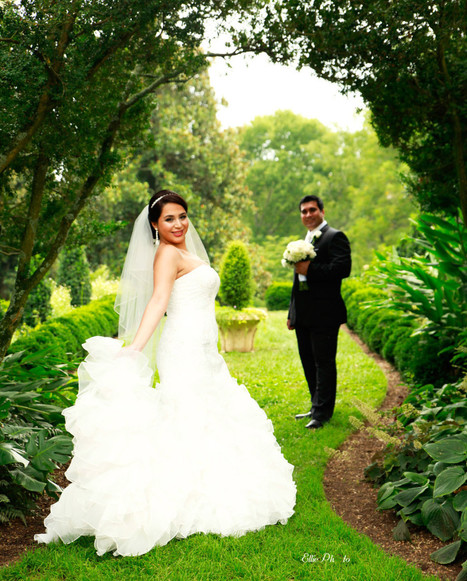 Top Rated Tips for Wedding Photography | Universal Entertainment | Scoop.it