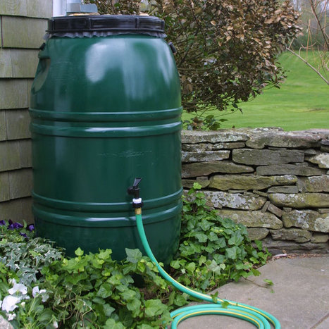 Collecting Rainwater Now Illegal in Many States (Video) | Politics | USA | Scoop.it