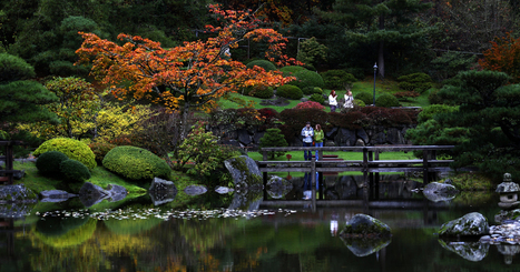 Fall shows its colors at Japanese Garden - The Seattle Times | Zen Gardens | Scoop.it