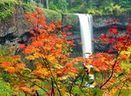 Incredible fall foliage hikes   The Miracle of Fall   Scoop.it