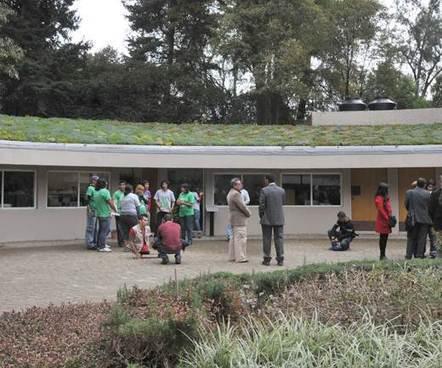 Inauguran azotea verde en jardín de Chapultepec | Jardines Verticales y azoteas verdes. | Scoop.it
