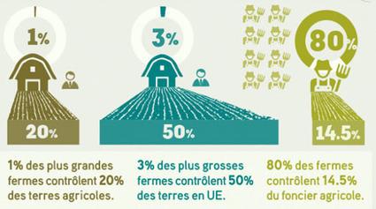 La moitié des terres en Europe est contrôlée par 3% de gros propriétaires | Pour une agriculture et une alimentation respectueuses des hommes et de l'environnement | Scoop.it