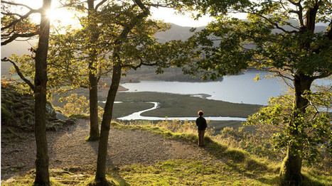 Autumn walk inspiration from the National Trust | One Step at a Time | Scoop.it