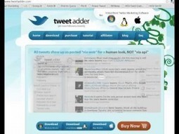 How to Not Get Your Twitter Account Banned (when using Tweet Adder) - One Empire. Yours.