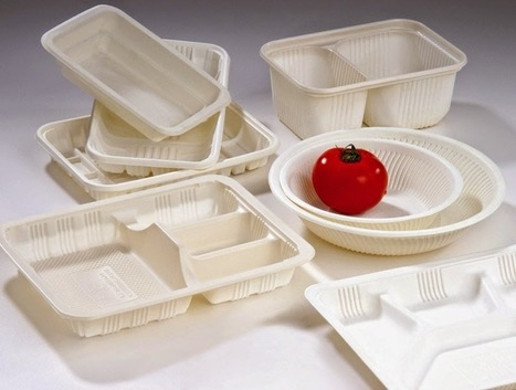 Disposable Food Packaging: How to Choose the Best Disposable Food Packaging Containers | Distribution | Scoop.it