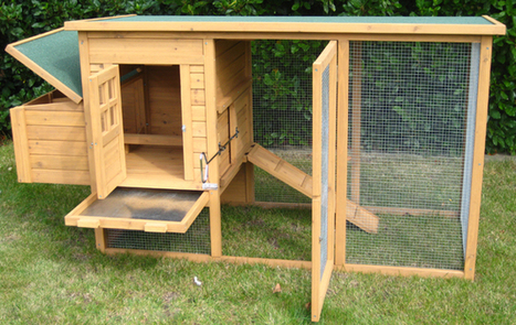 How To Build A Chicken Coop Review by Bill Keene | User Reviews | honestreviewcenter | Scoop.it