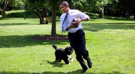 Les photos officielles de la Maison Blanche vues par des photographes français   Slate   Plein les yeux et les oreilles   Scoop.it