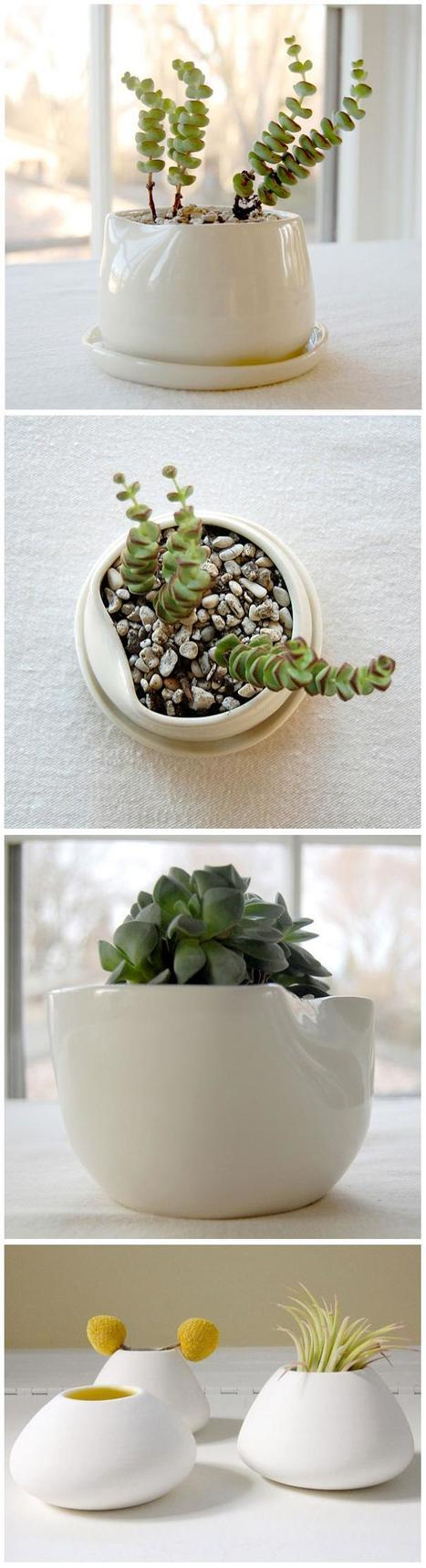 Green Home Ideas : Pigeon Toe Ceramics | Backyard Gardening | Scoop.it