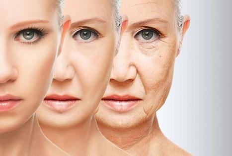 Manipular los niveles de una proteína mitocondrial podría ayudar a frenar el envejecimiento | Por: @linternista | Salud Publica | Scoop.it